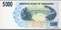 Zimbabwe - p45 - 5.000 Dollars - 01.02.2007 - Reserve Bank of Zimbabwe