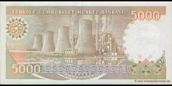Turquie - p198 - 5.000Türk Lirası - L. 1970 (1984 - 2002) - Türkiye Cumhuriyet Merkez Bankası