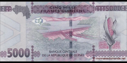 Guinée - p49 - 5.000 francs - 2015 - Banque Centrale de la République de Guinée