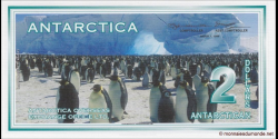 Antarctique-pNL01