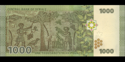 Syrie - p116 - 1000 Syrian Pounds - 2013 - Central Bank of Syria